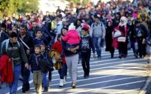 وزراء داخلية الولايات الألمانية يمددون قرار حظر ترحيل السوريين إلى بلدهم